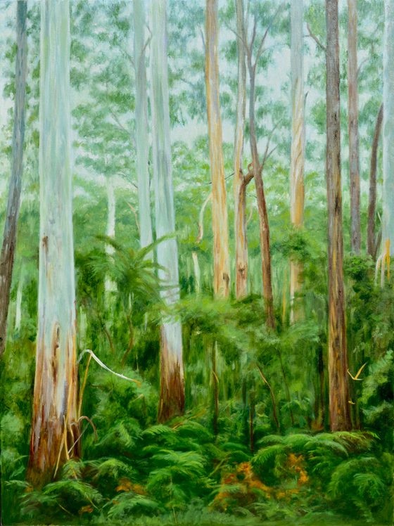 Yarra Ranges Forest Large WIP
