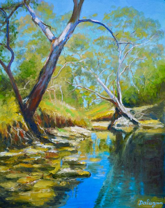 High summer on Dandenong Creek
