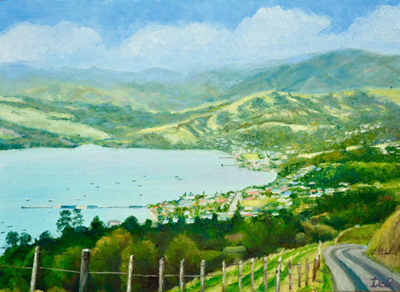 Above Akaroa Harbour NZ