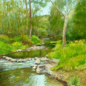 Darebin Creek Mini Rapids